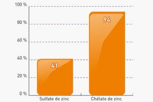 Absorption du Zinc selon sa forme d'apport